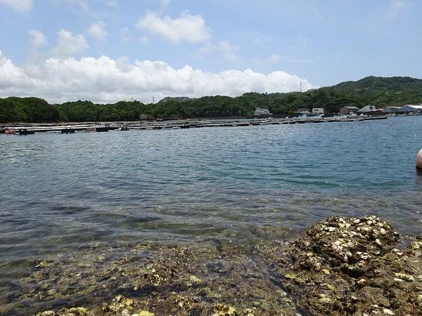 白浜彩朝楽から近い釣りスポット